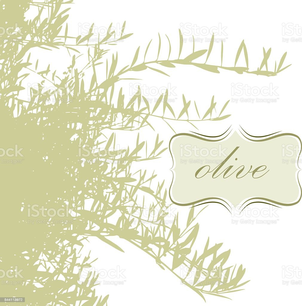 olive branches vector art illustration