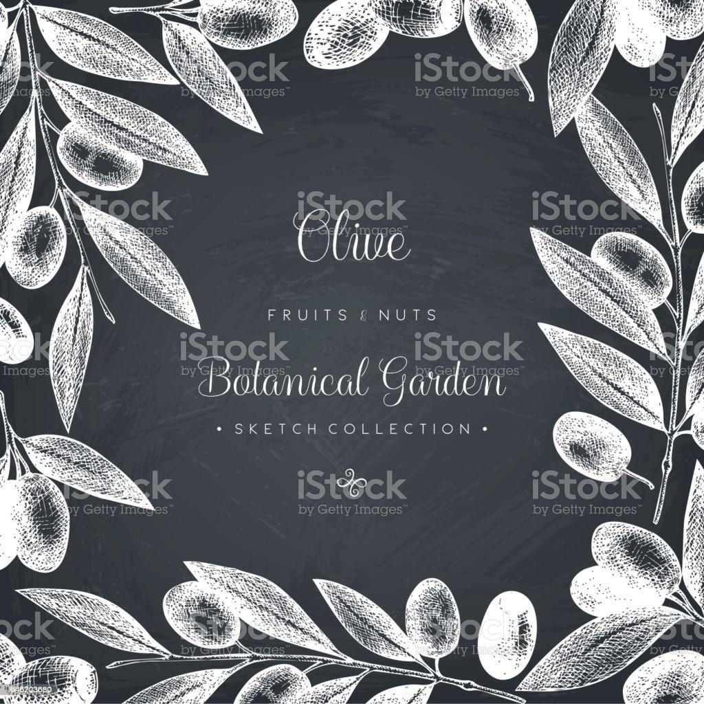 Olive card design vector art illustration