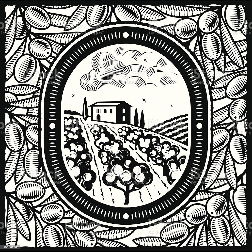 Olive grove black and white royalty-free stock vector art