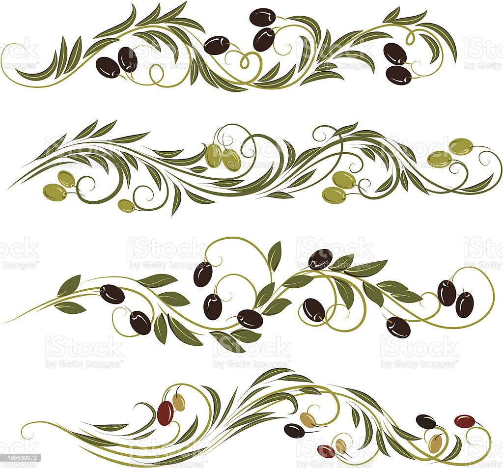 olive ornament vector art illustration