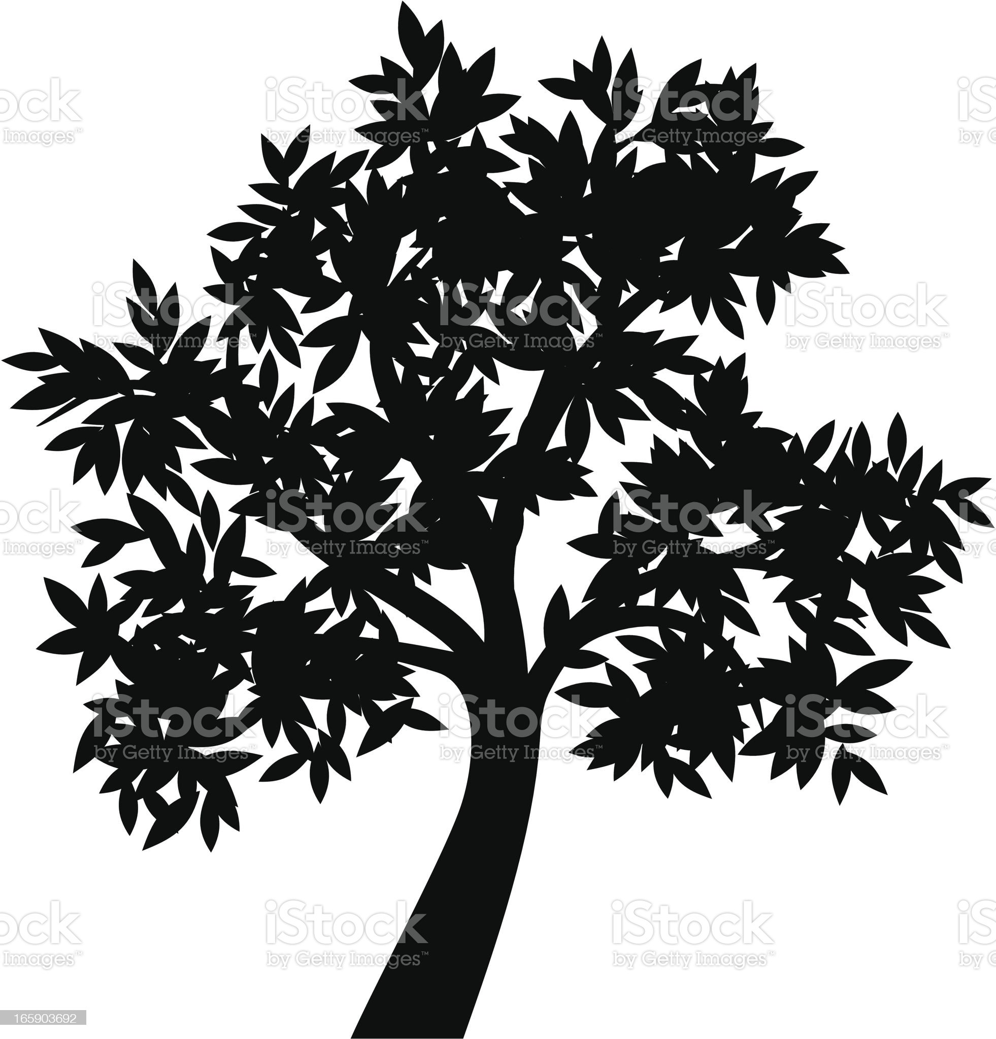 Olive tree II royalty-free stock vector art
