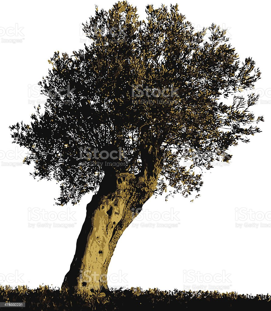 Olive Tree silhouette royalty-free stock vector art