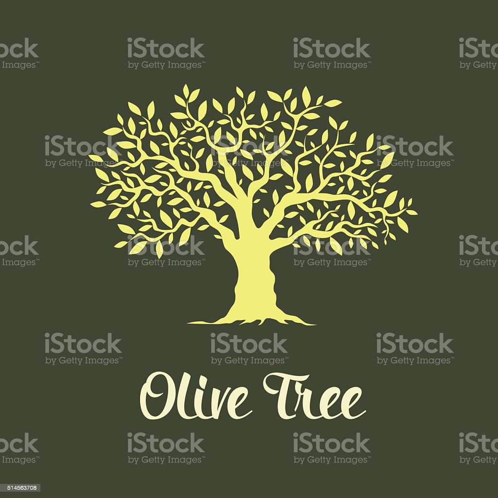 olive tree vector art illustration