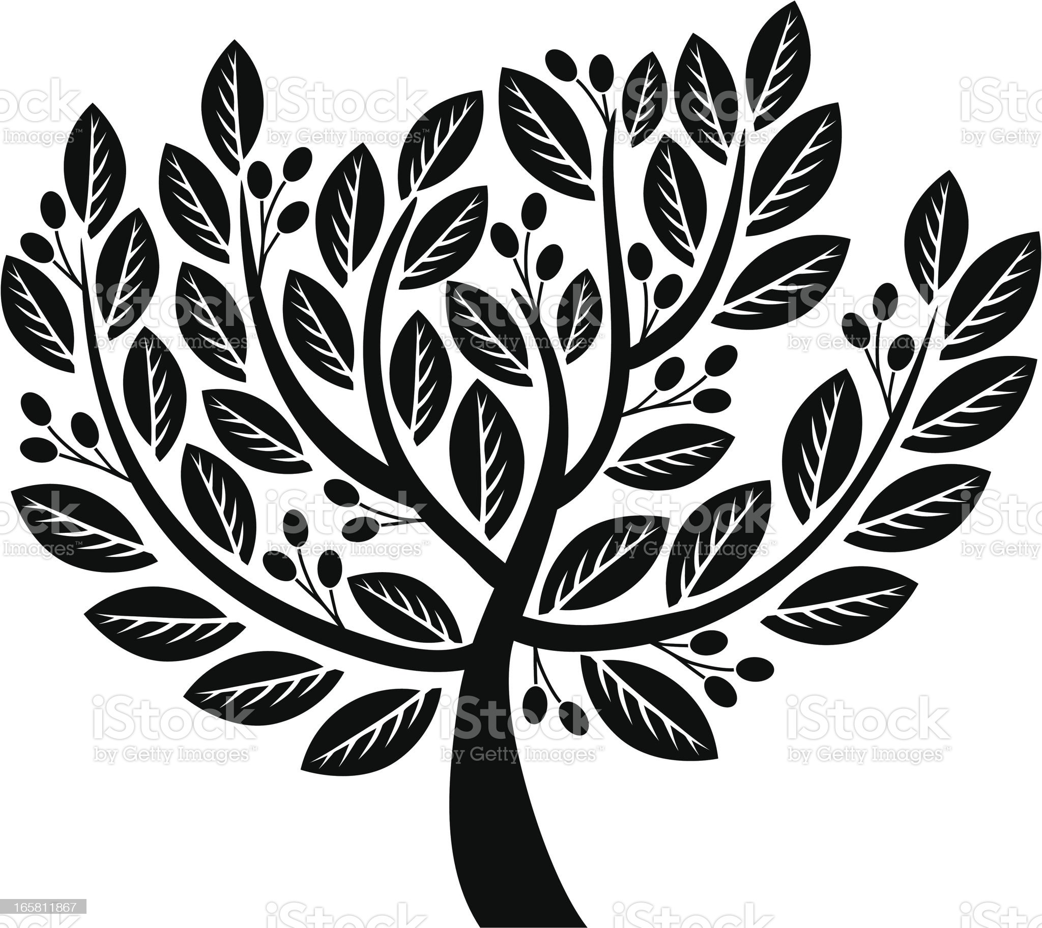 Olive royalty-free stock vector art