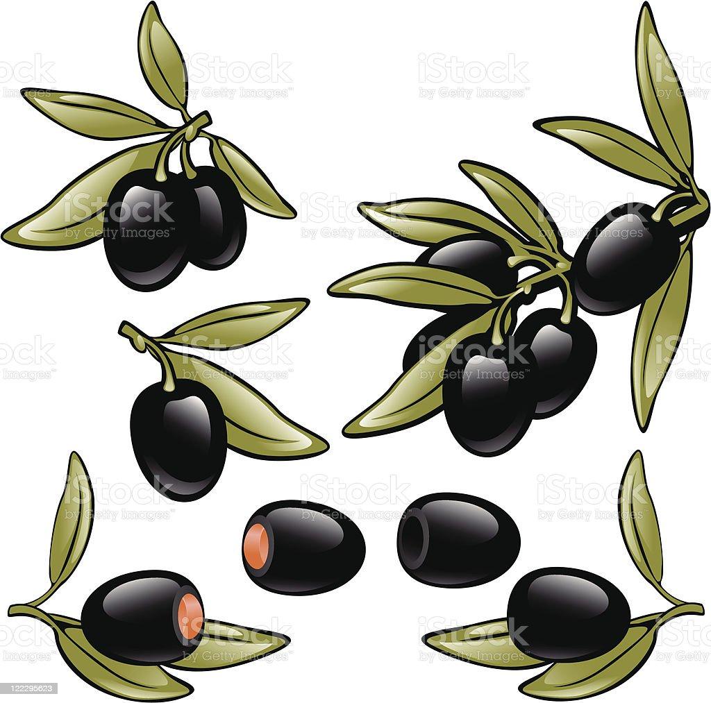 olives black. set. vector art illustration