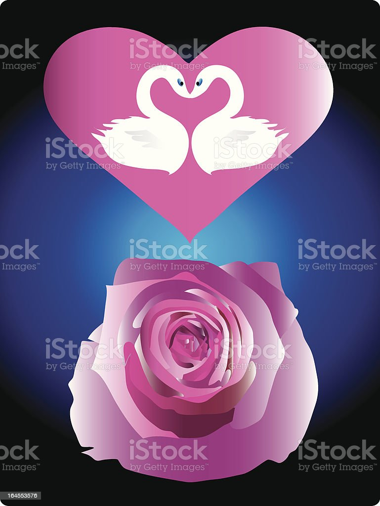 One Heart, Two Swans and  One Rose (Vector) royalty-free stock vector art