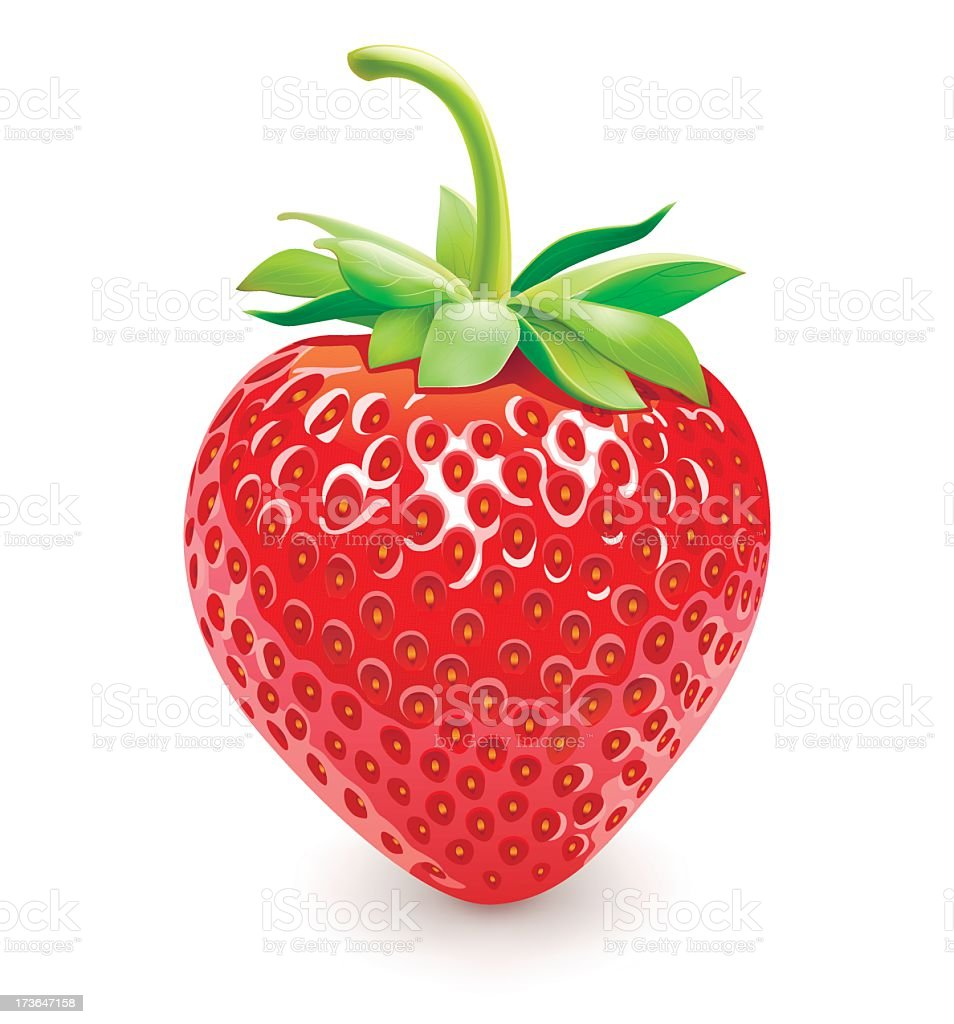 One lonely strawberry on a white background vector art illustration