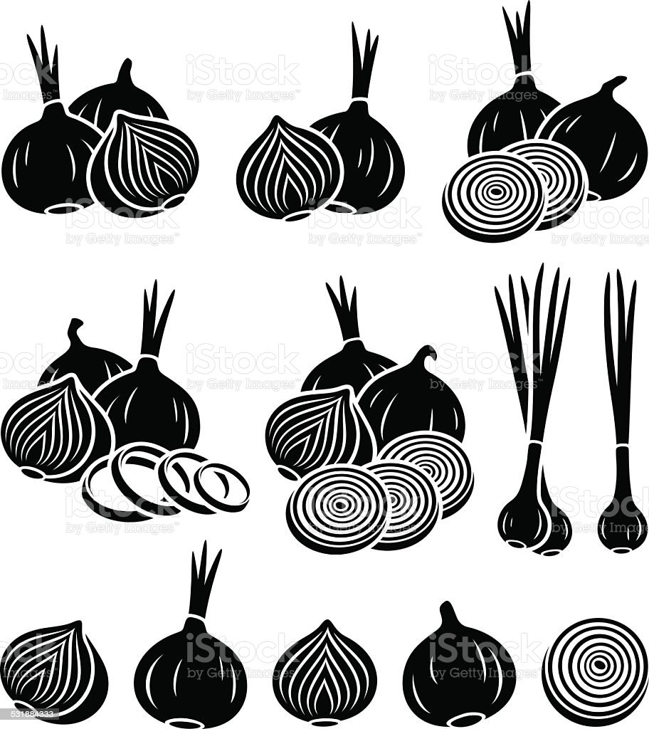Onion set. Vector vector art illustration