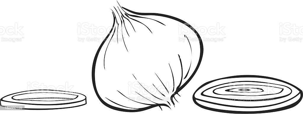 Onions Simple royalty-free stock vector art