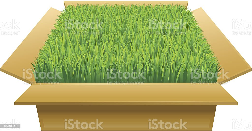 Open box with green grass royalty-free stock vector art