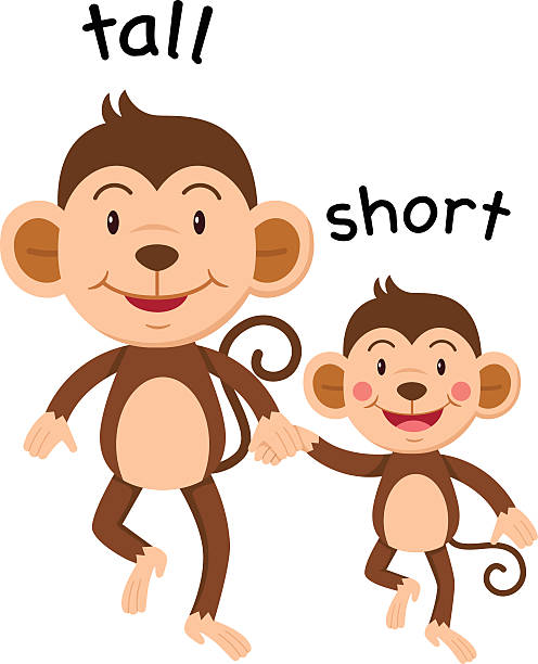 Tall And Short Clip Art, Vector Images & Illustrations ...