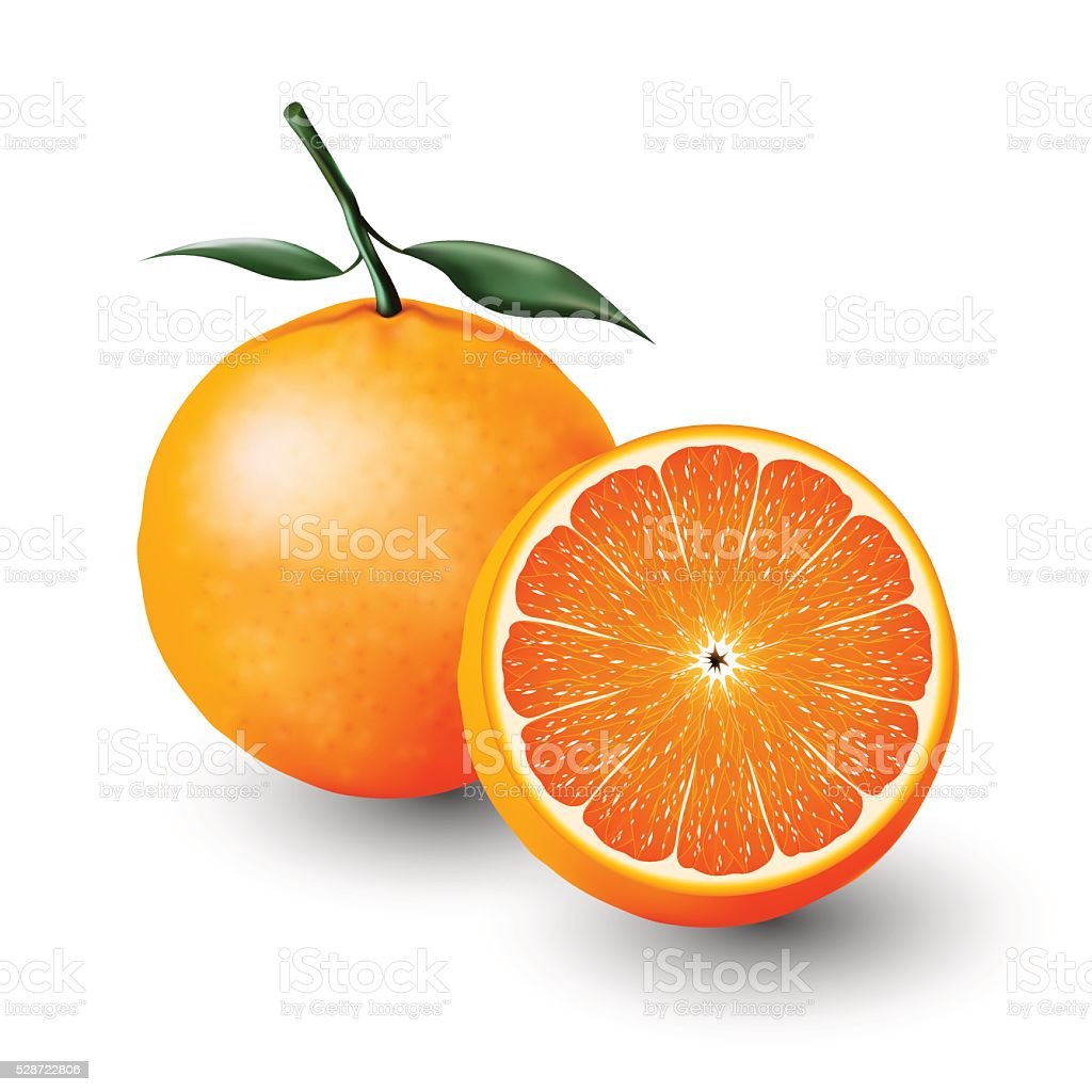 Orange and a half of orange, fruit, transparent, Vector vector art illustration
