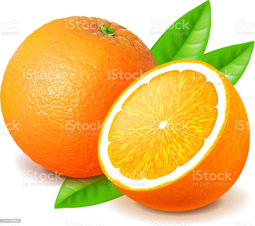 Orange and slice isolated on white vector vector art illustration