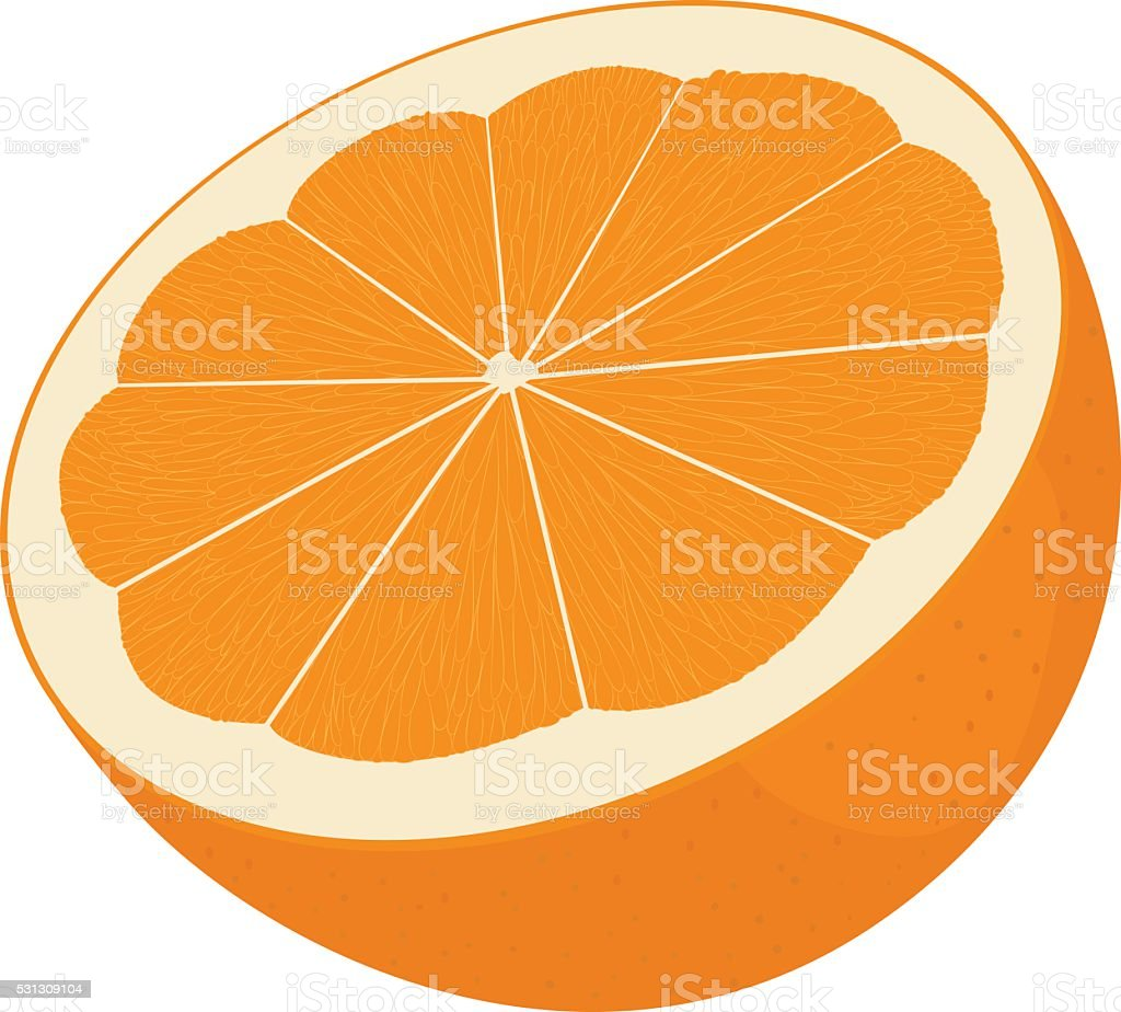 Orange cut in half. Citrus isolated on white background vector art illustration