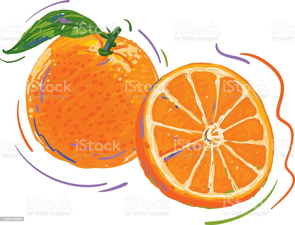 Orange Dynamic Drawing And Color Sketch vector art illustration