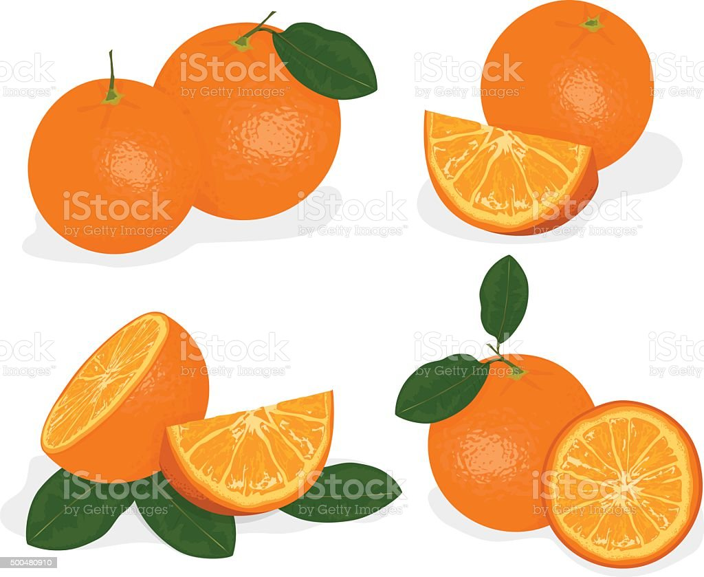 Orange fruit isolated on white background vector art illustration
