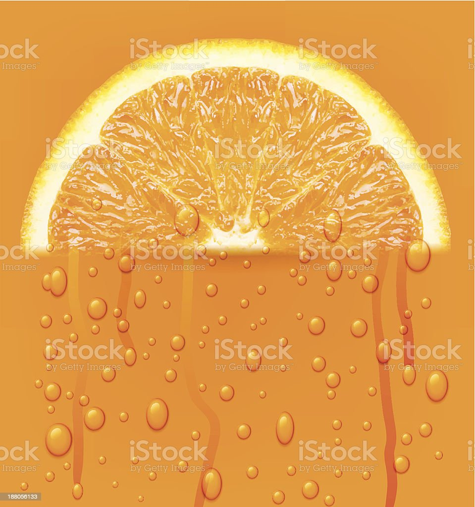 Orange fruit with water drops. royalty-free stock vector art