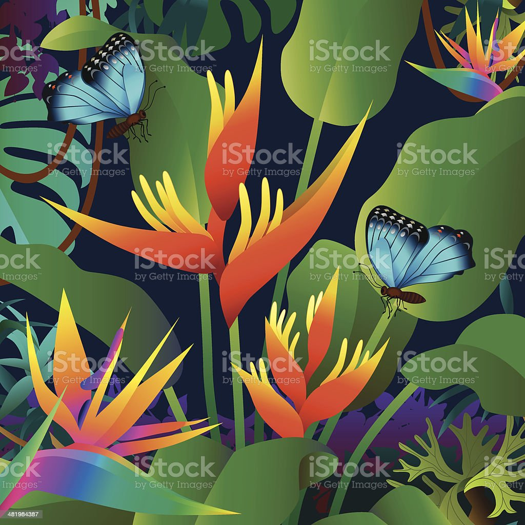 orange heliconia and morpho butterflies vector art illustration