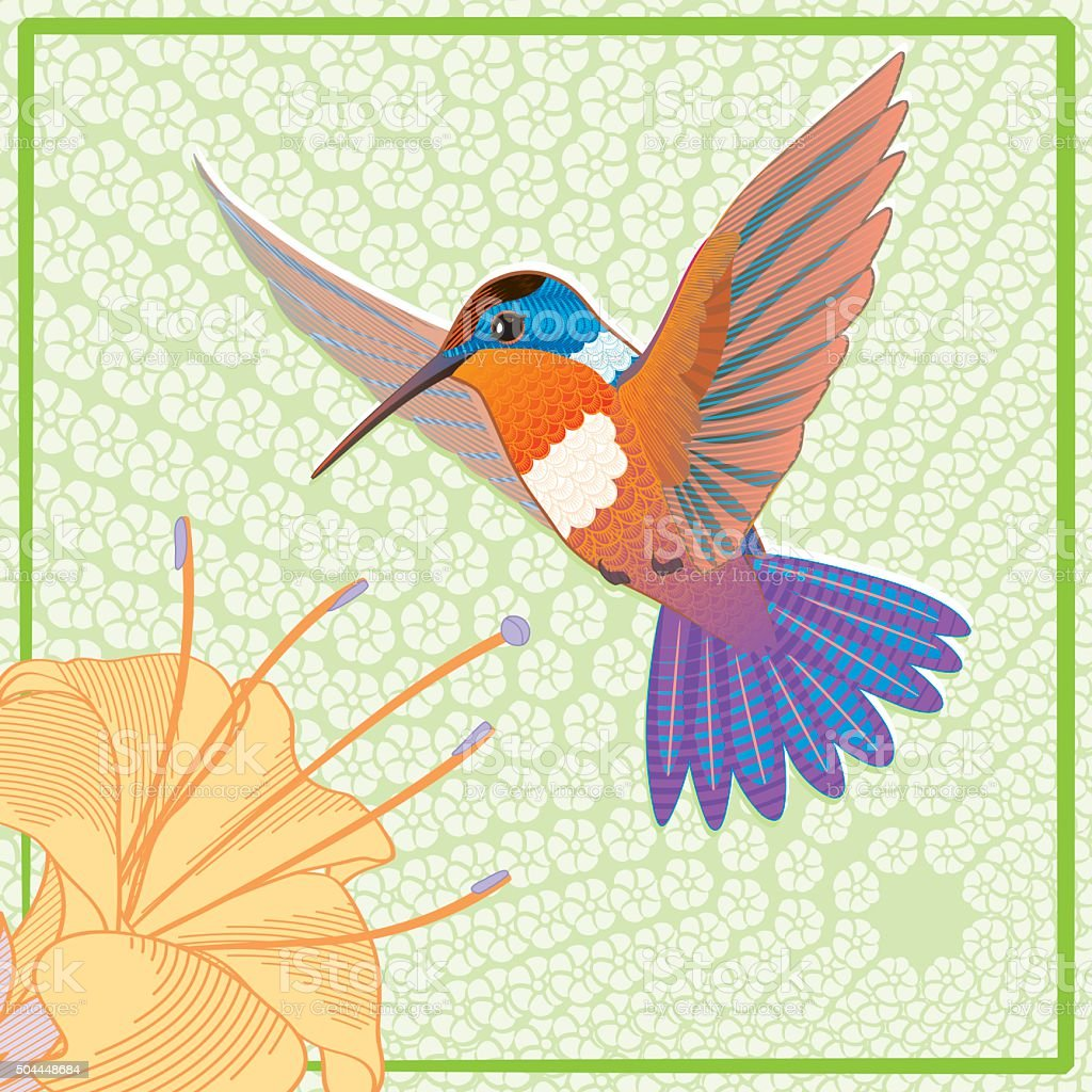 Orange hummingbird colibri banner, vector illustration vector art illustration