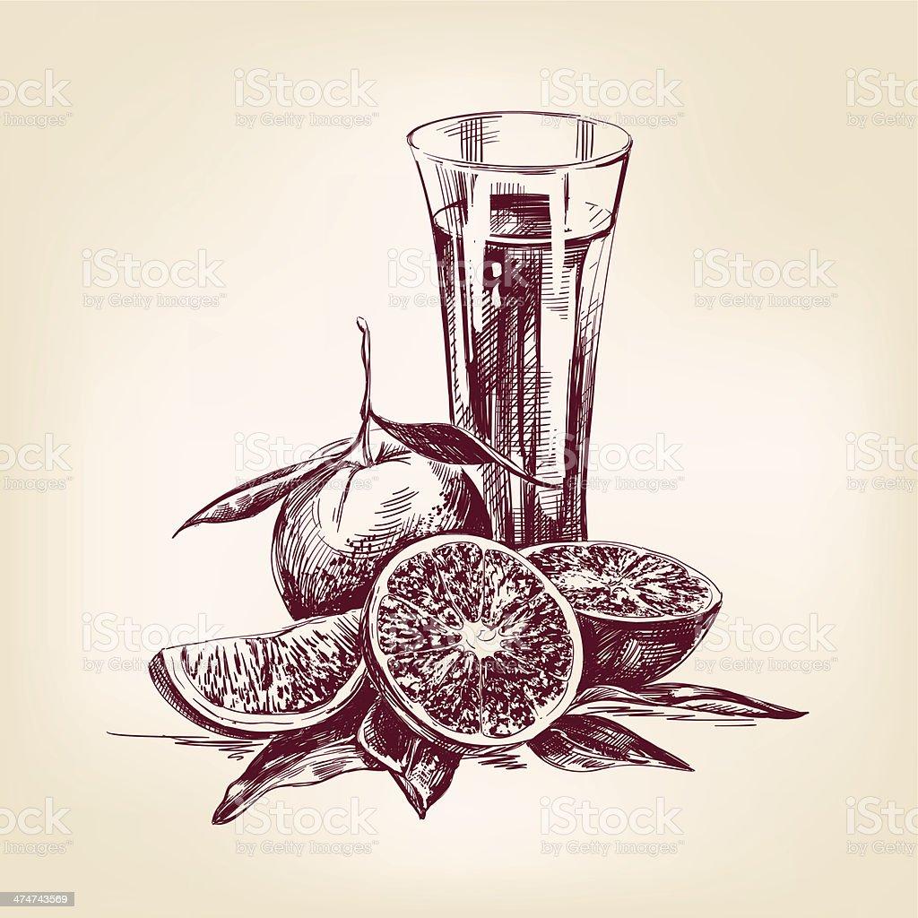 orange juice vintage hand drawn vector illustration vector art illustration