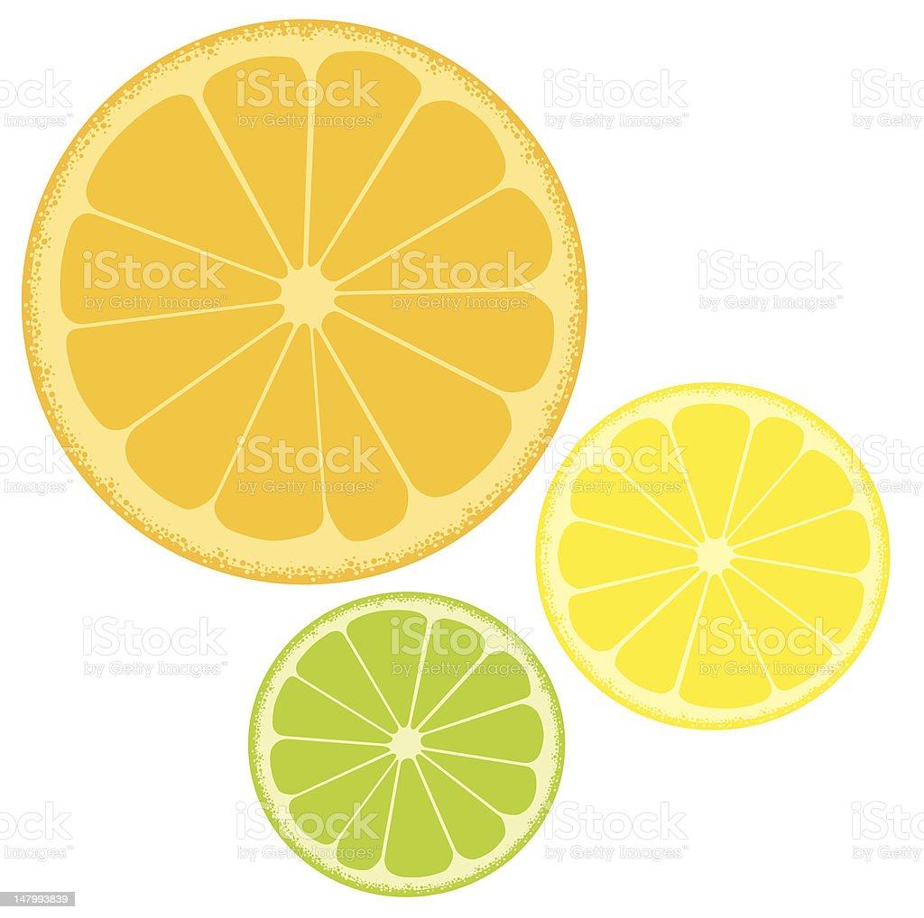 orange, lemon and lime royalty-free stock vector art