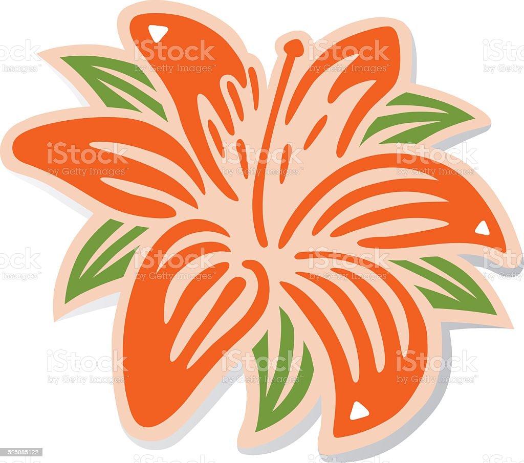 Orange lily vector art illustration