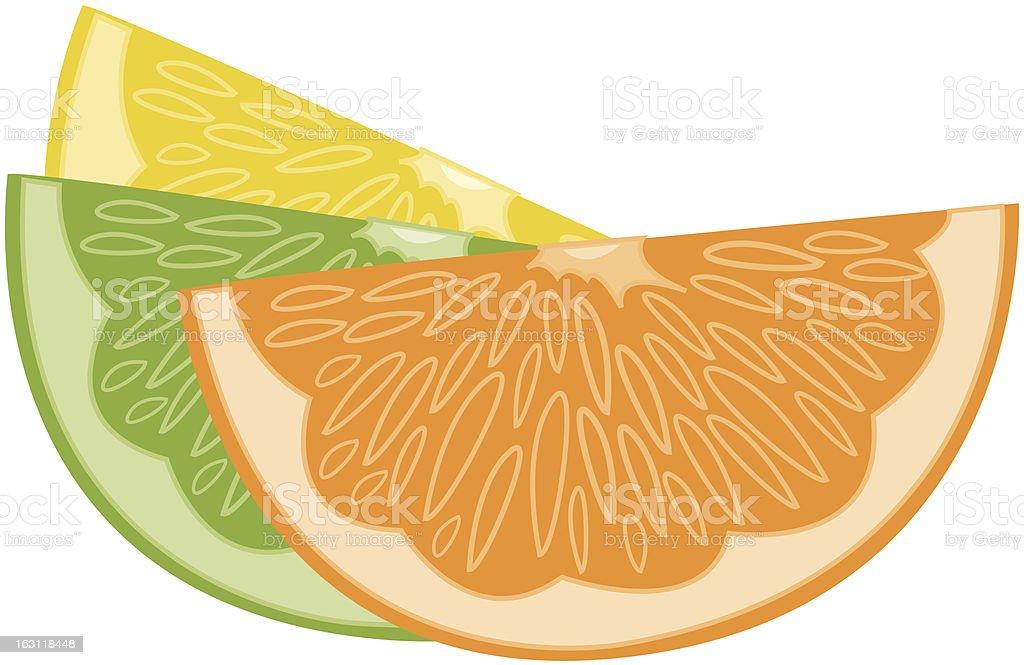 orange lime lemon [ vector fruit ] royalty-free stock vector art