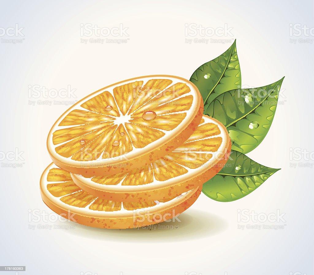 Orange Segments royalty-free stock vector art