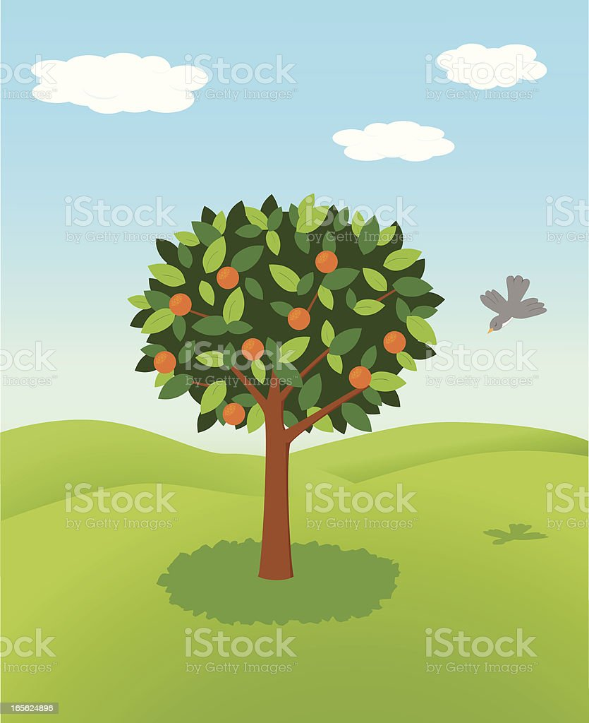 Orange tree royalty-free stock vector art