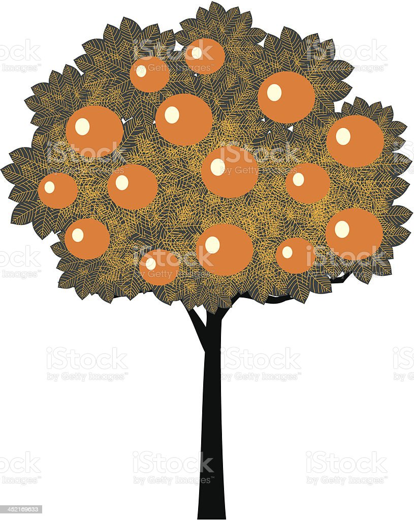 Orange tree vector art illustration