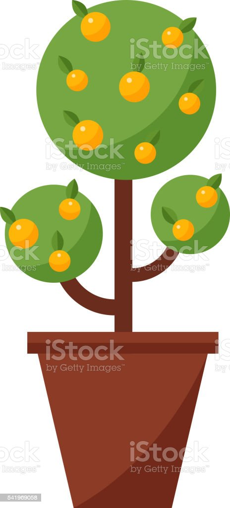 Orange tree vector illustration. vector art illustration