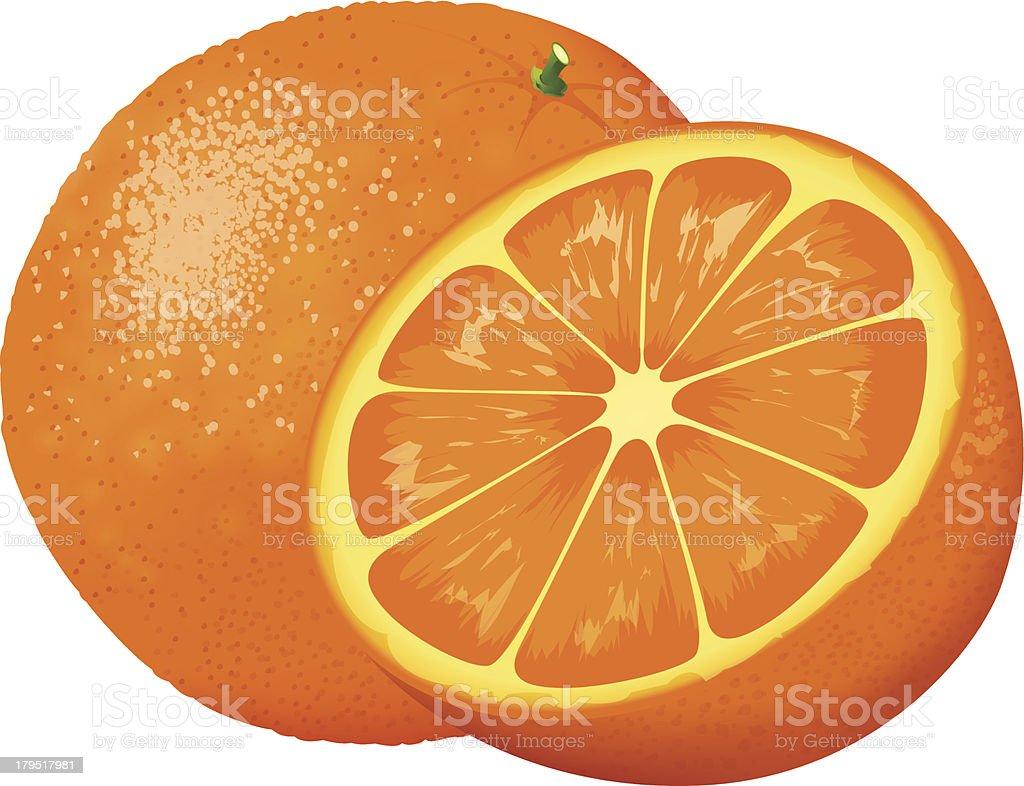 Orange royalty-free stock vector art