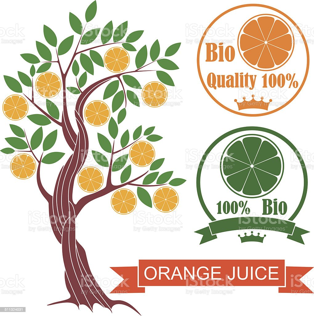 Orange vector art illustration