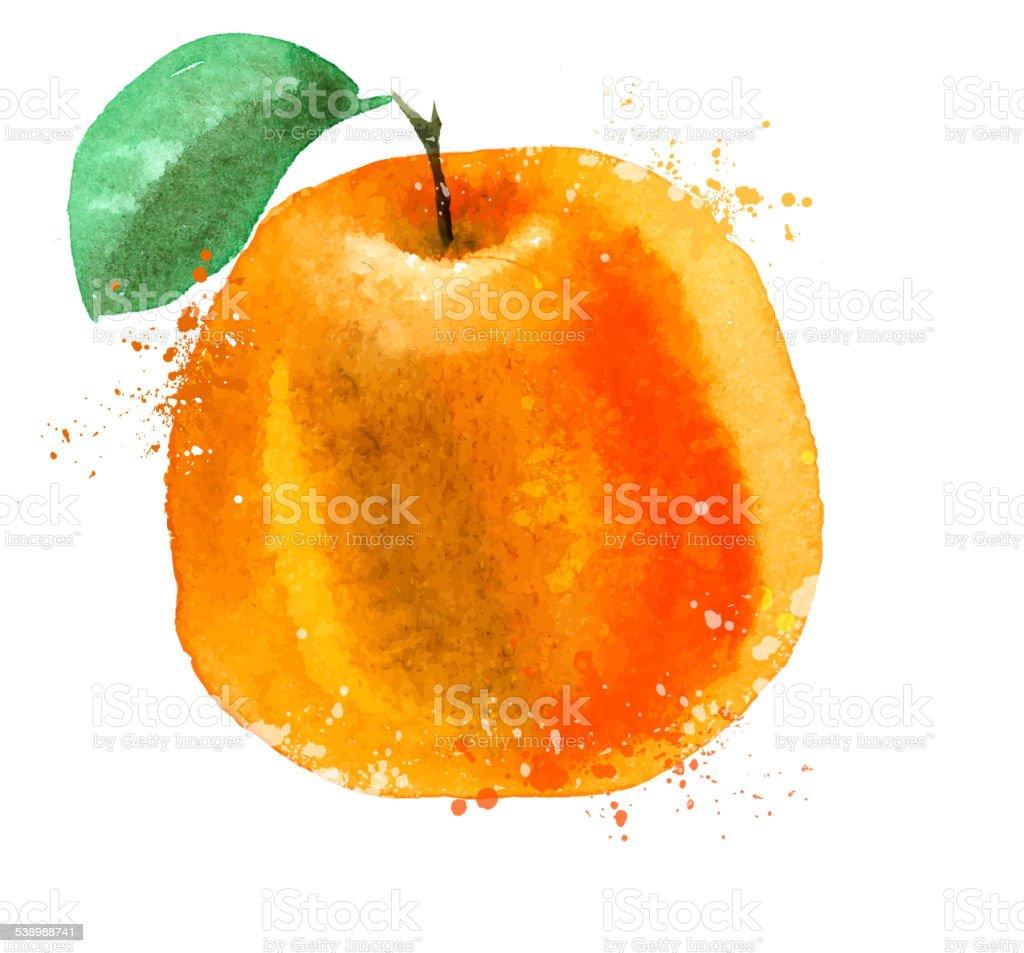 Orange vector logo design template. food or fruit icon vector art illustration