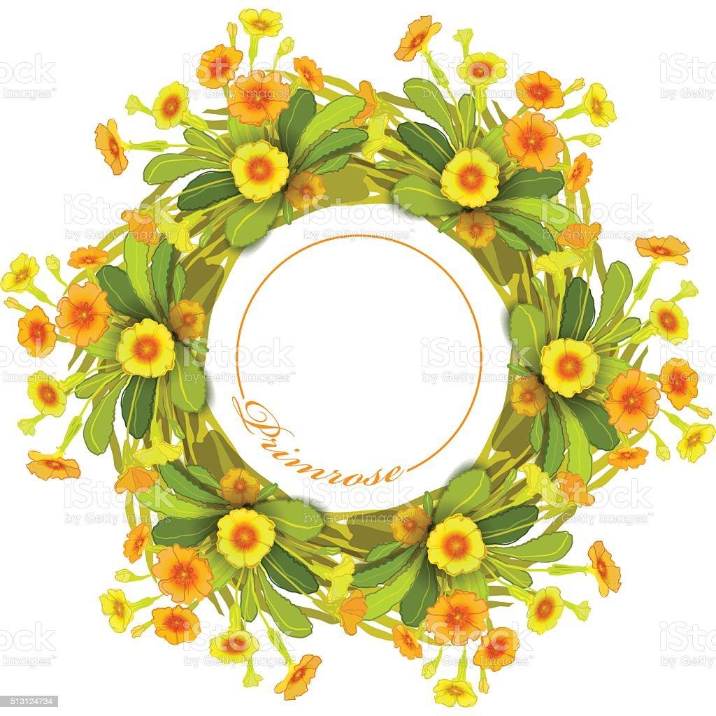 Orange yellow primroses wreath. vector art illustration