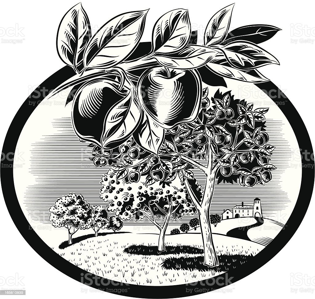 Orchard in oval frames with apples royalty-free stock vector art