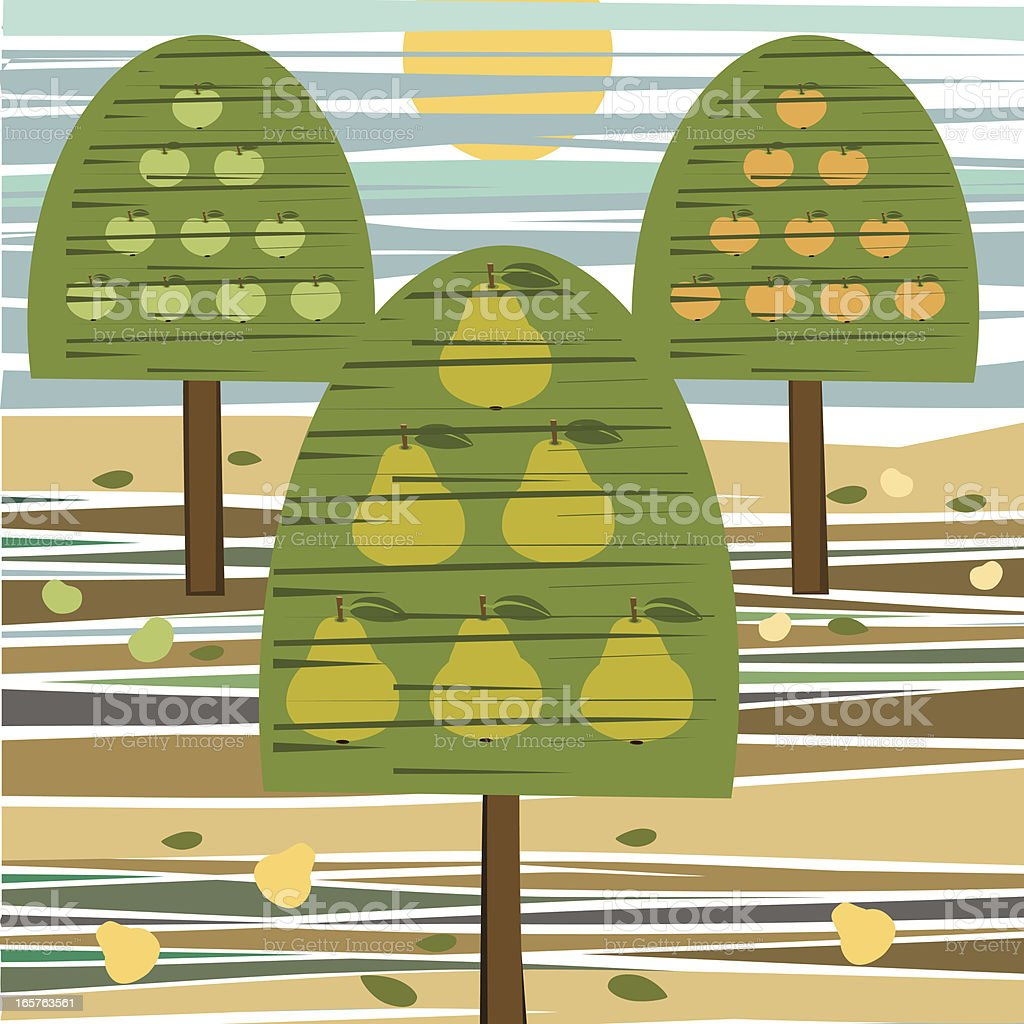 Orchard of Pear And Apple Trees, Sunset royalty-free stock vector art