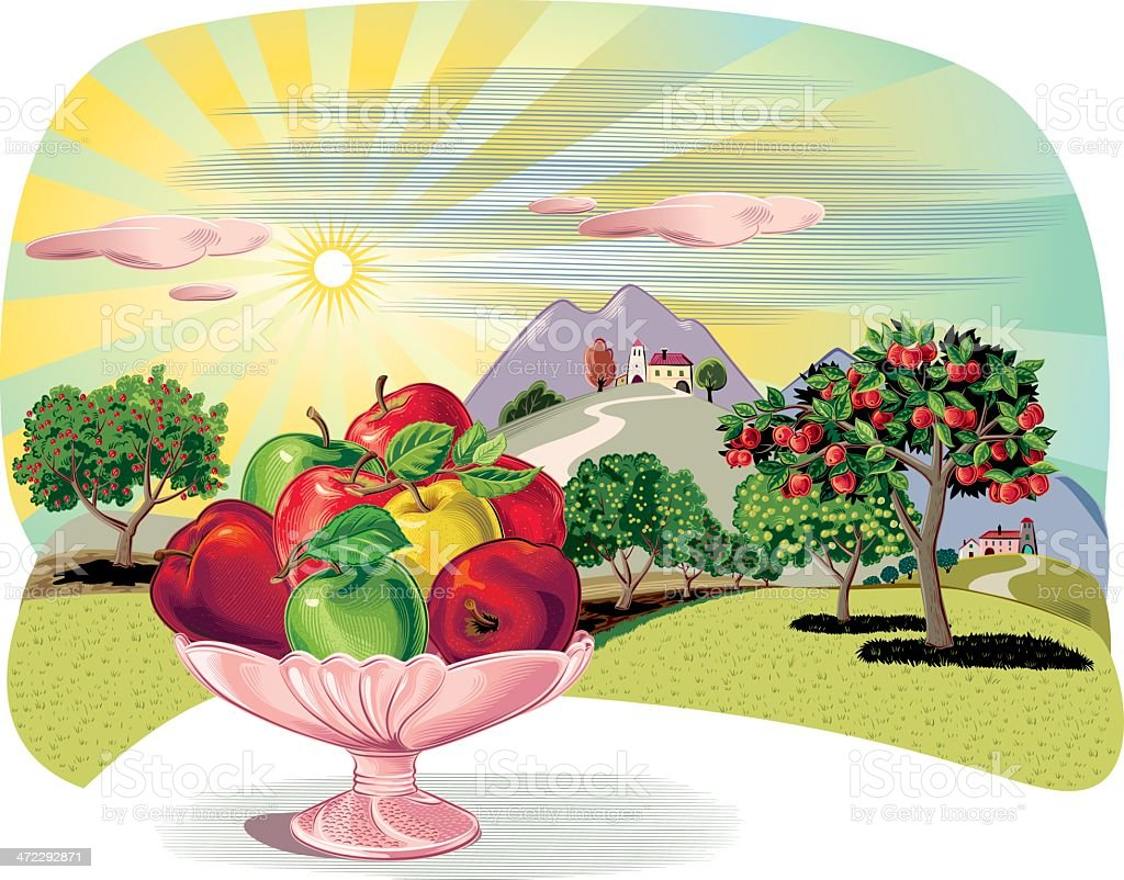 Orchard with fruit dish and apples vector art illustration