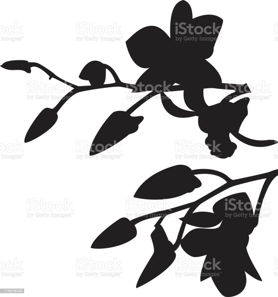 Orchid Elements royalty-free stock vector art
