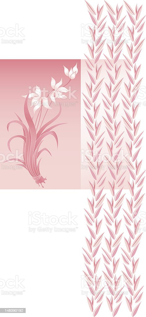 Orchid (vector) royalty-free stock vector art