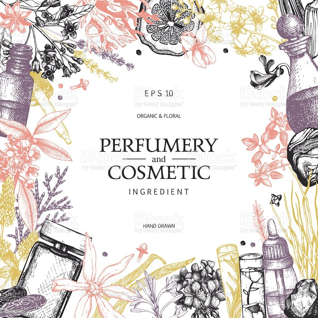 Organic and floral perfume ingredients background. vector art illustration