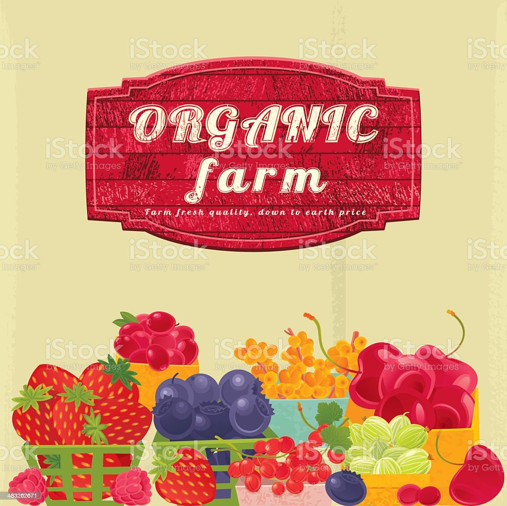 Organic Berry Farm Sign vector art illustration