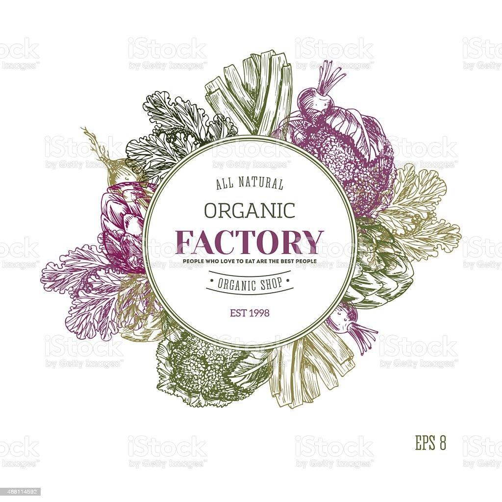 Organic food banner collection. Fresh vegetables. Vector illustration vector art illustration