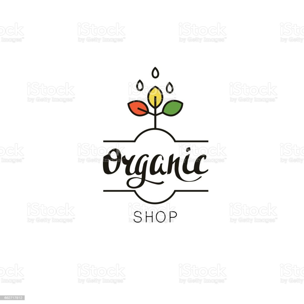 Organic shop logo template. Eco badge with handwritten text and plant in linear style. vector art illustration