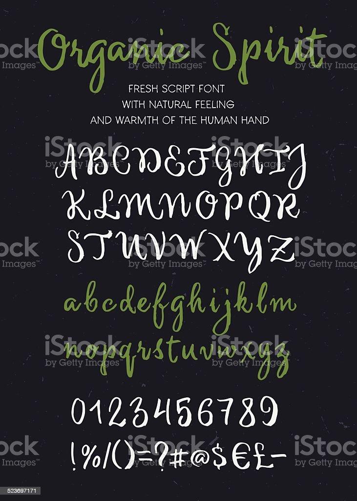 Organic spirit vector brush script alphabet vector art illustration