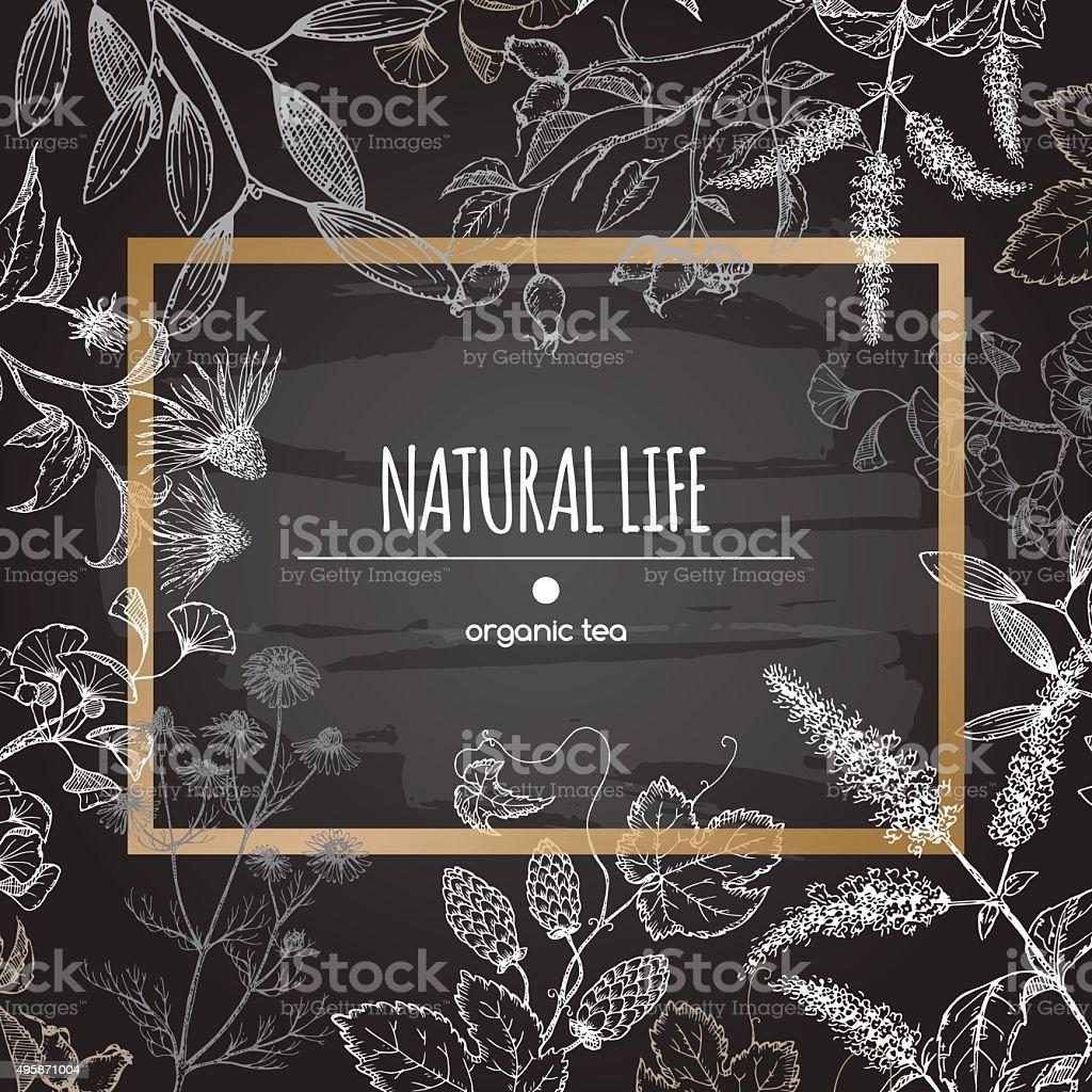 Organic tea label decorated with herbs on blackboard background. vector art illustration