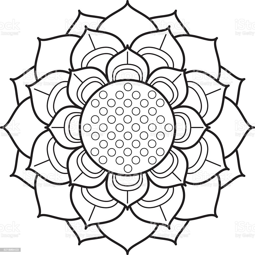 Lotus Flower Line Drawing Vector Free Download : Ornamental lotus flower drawing stock vector art