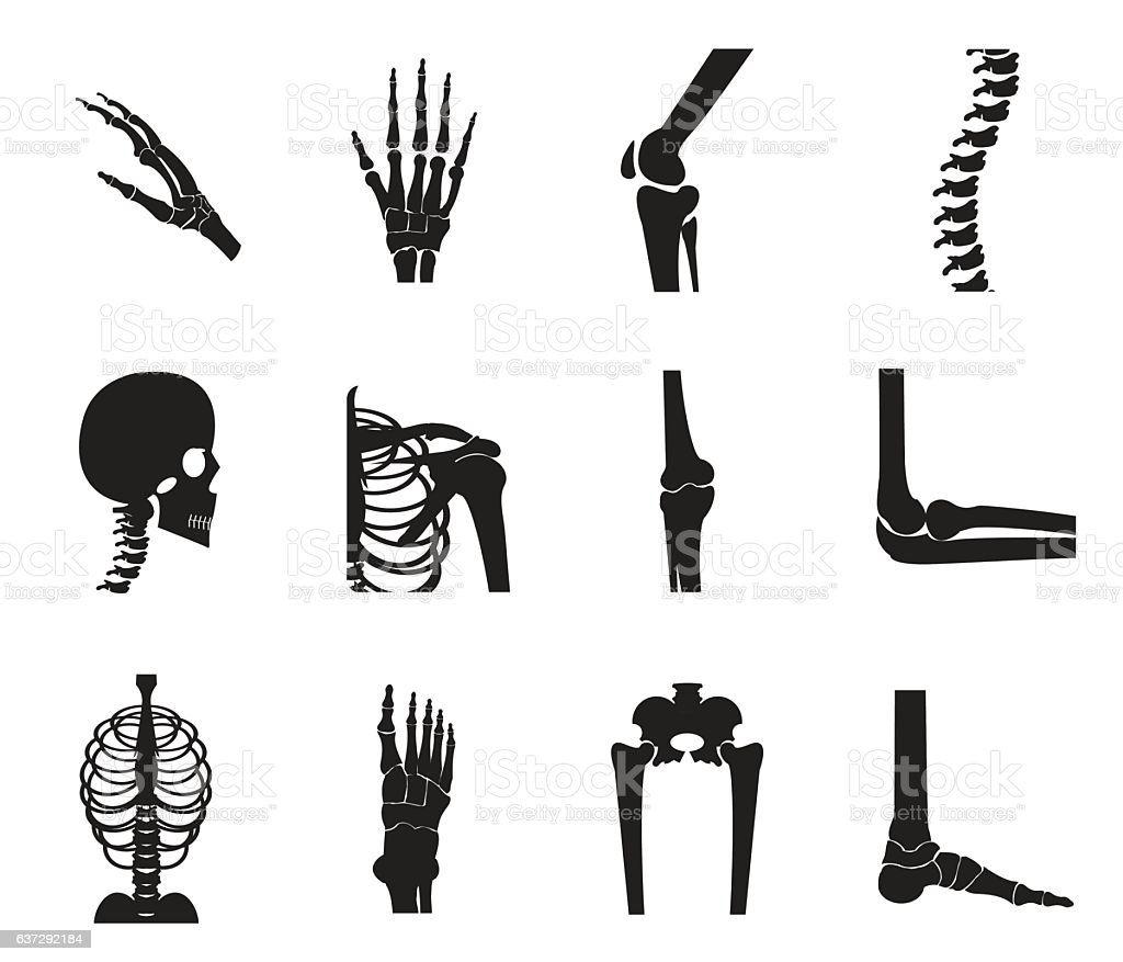 Orthopedic and spine icon set on white background vector art illustration