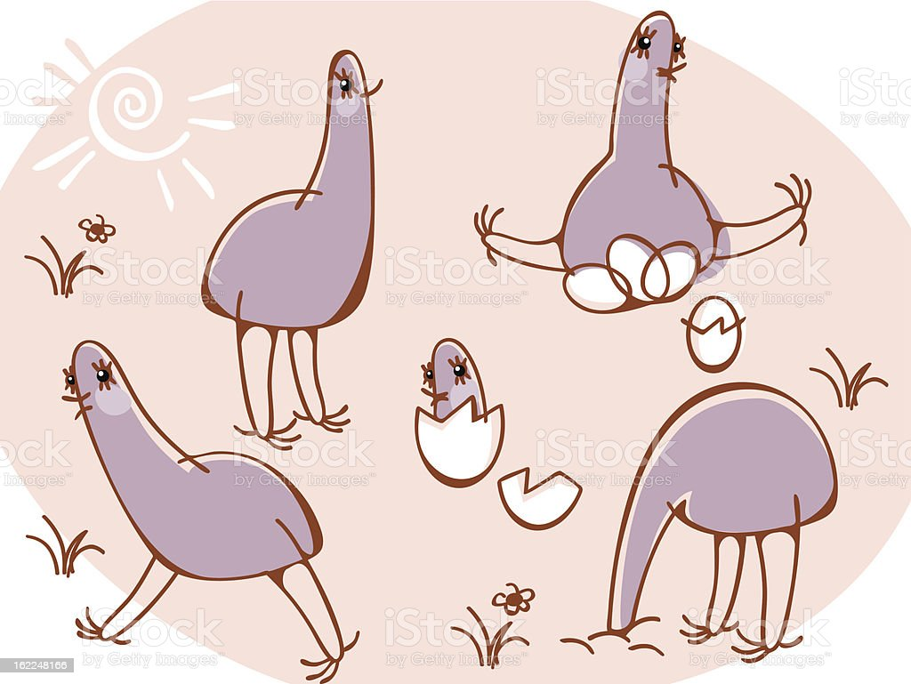 ostriches royalty-free stock vector art