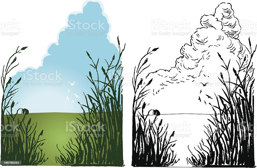 Outdoors - Farm Field and Sky royalty-free stock vector art